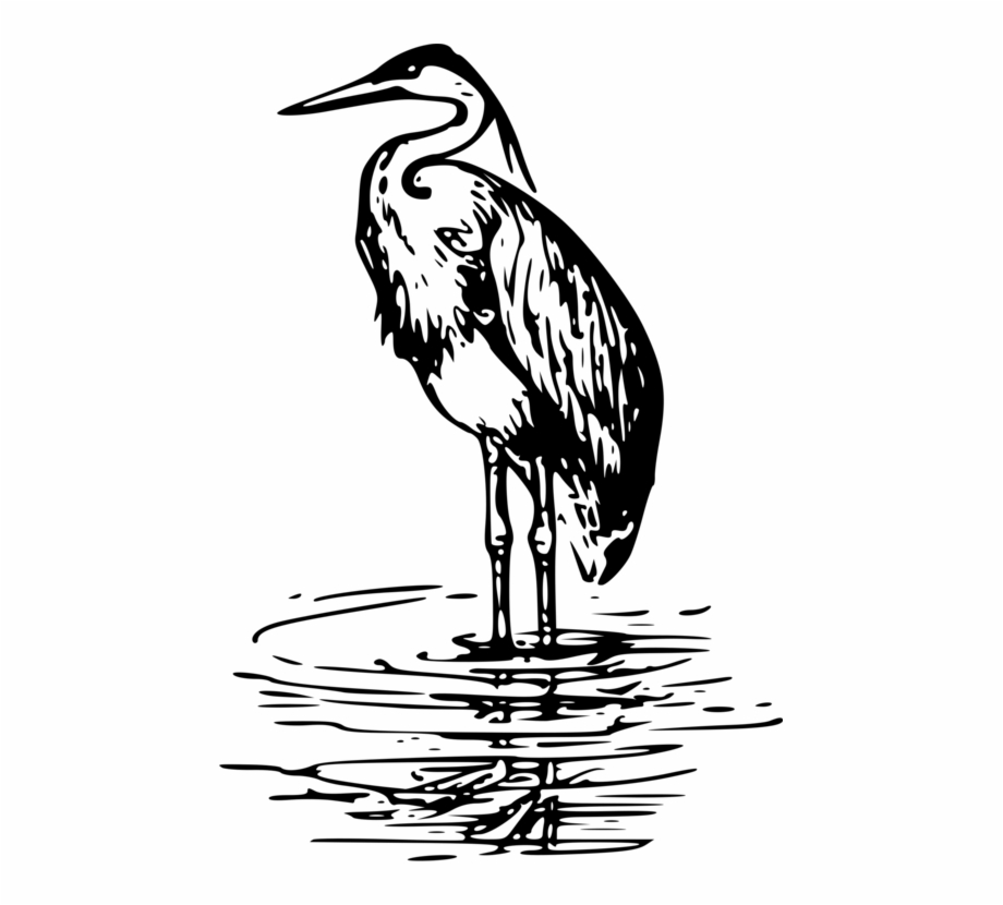Heron Clipart Black And White.