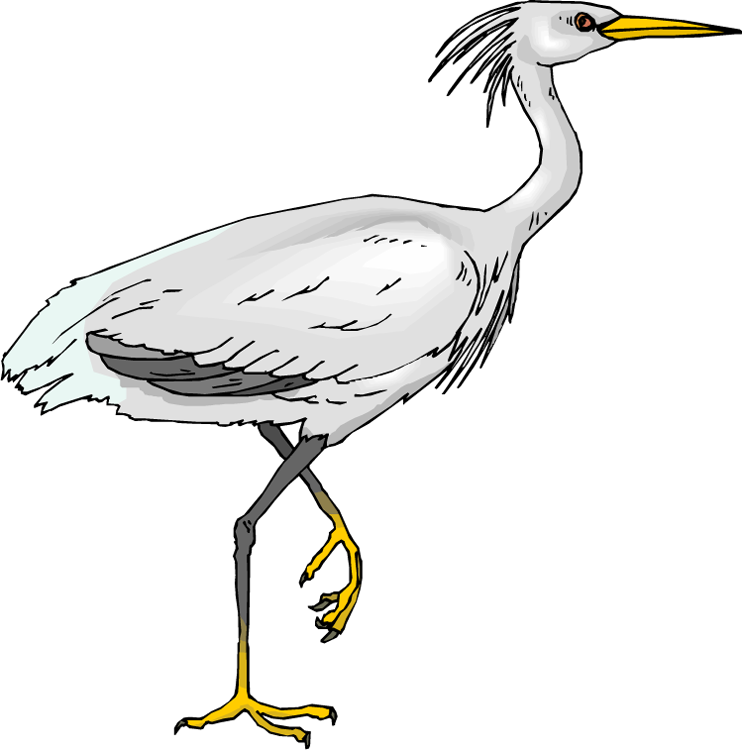 Free Heron Clipart, Download Free Clip Art, Free Clip Art on.