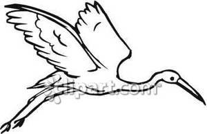 and White Crane In Flight.
