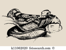 Herpetology Clip Art Vector Graphics. 113 herpetology EPS clipart.