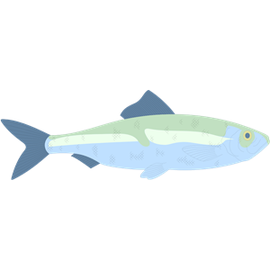 HERRING clipart, cliparts of HERRING free download (wmf, eps, emf.
