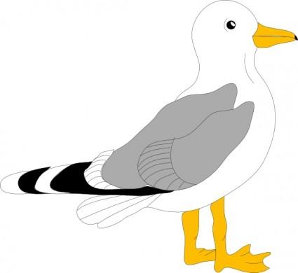 Gull Clip Art.