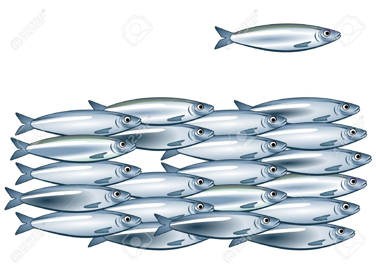Sardine Shoal Royalty Free Cliparts, Vectors, And Stock.
