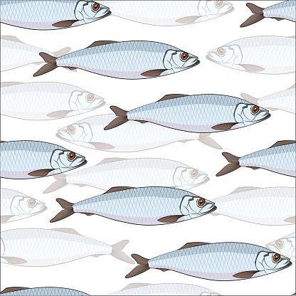 School Of Fish Clip Art, Vector Images & Illustrations.