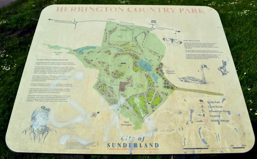 Herrington Country Park, Sunderland.