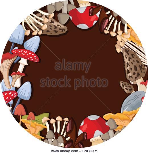 Mushroom Circle Stock Photos & Mushroom Circle Stock Images.