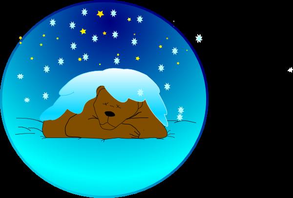 Sleeping Bear Under Stars With Snow.