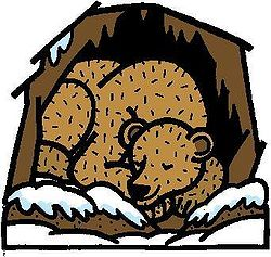 Hibernating Bear Clipart.