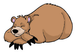 Animals that hibernate clipart.