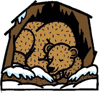 Story Time: Hibernation.