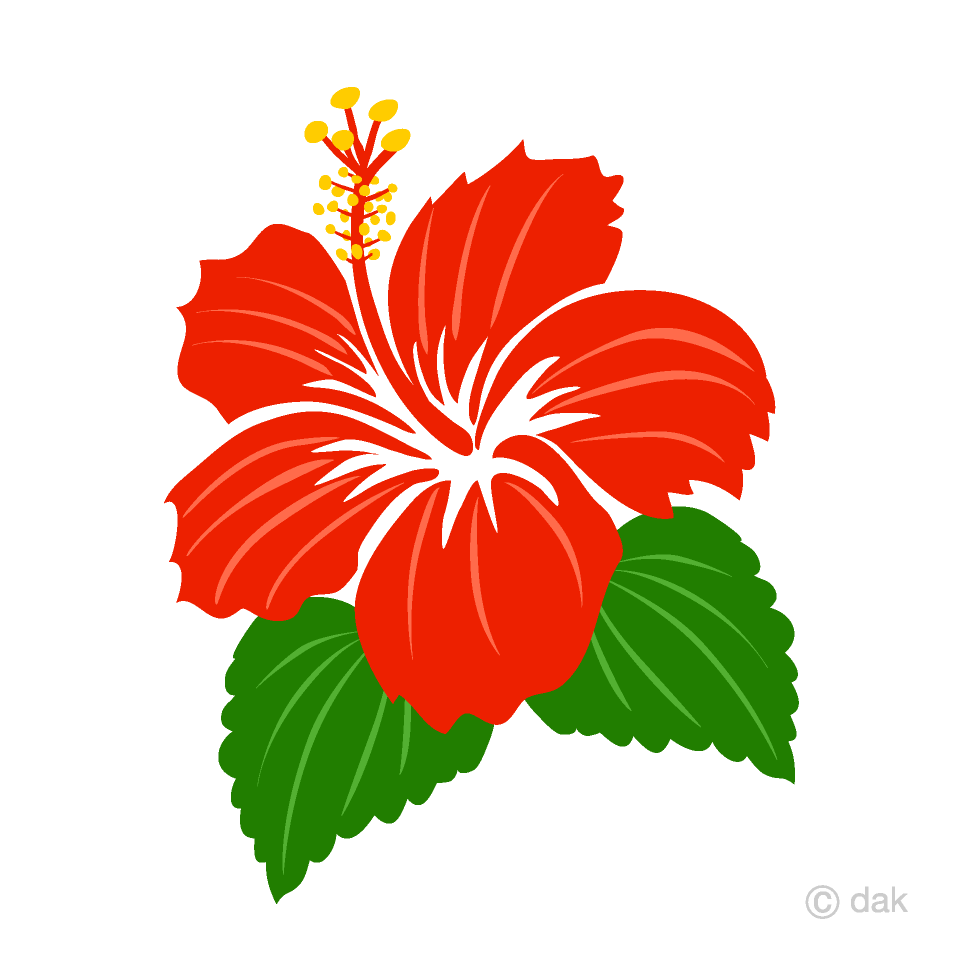 Free Simple Red Hibiscus Clipart Image|Illustoon.