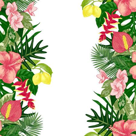 2,093 Hibiscus Border Stock Illustrations, Cliparts And Royalty Free.