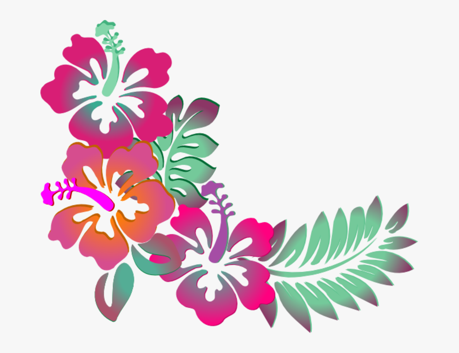 Hibiscus Design.