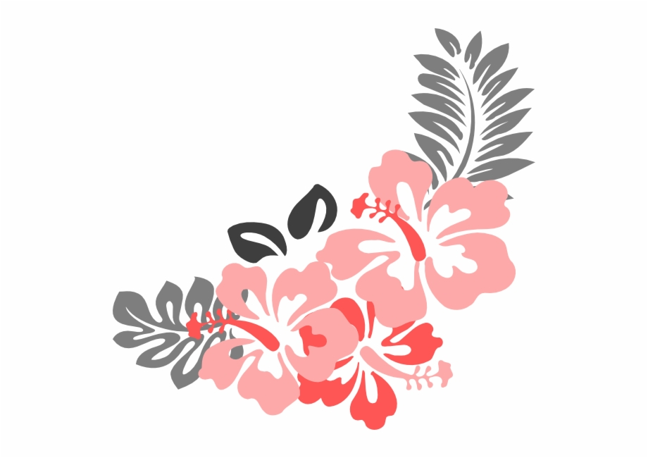 Hibiscus Flower Png Border.