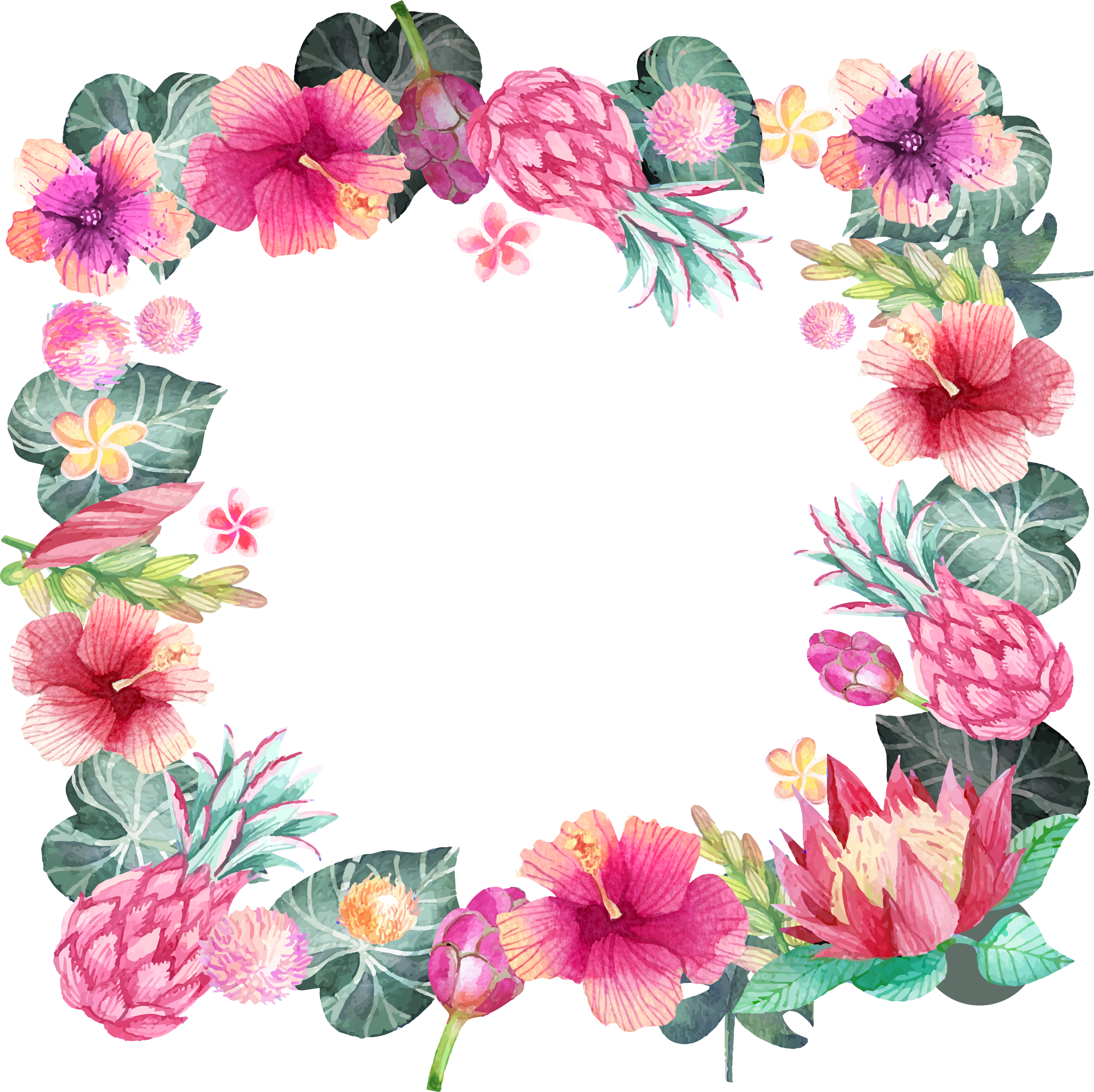 HD Pink Hibiscus Border Png Transparent PNG Image Download.