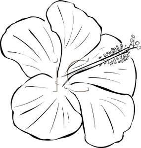Flower Black and White Clipart #34630.