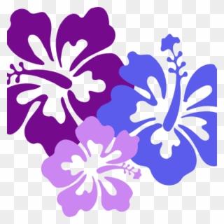 Free PNG Hibiscus Clip Art Border Clip Art Download.