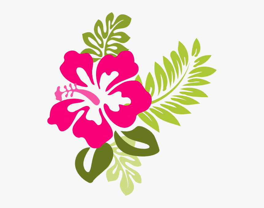 Hibiscus Clipart Different Flower.