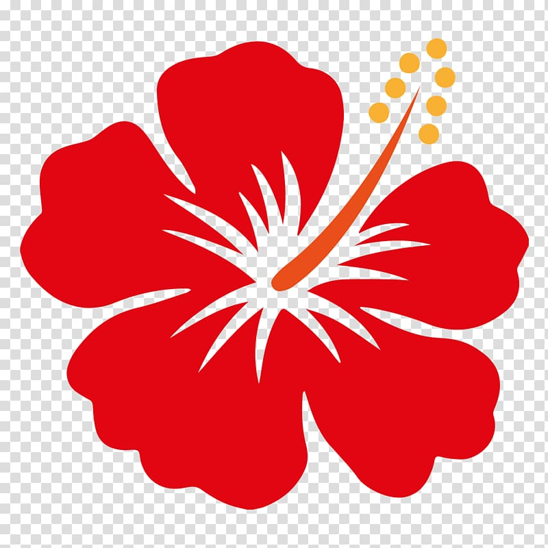 Download High Quality hibiscus clipart transparent.