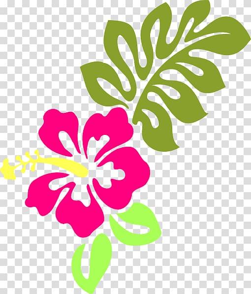 Hawaiian hibiscus Shoeblackplant , hibiscus transparent.