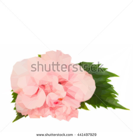 Double Flower Hibiscus Red Stock Photos, Royalty.