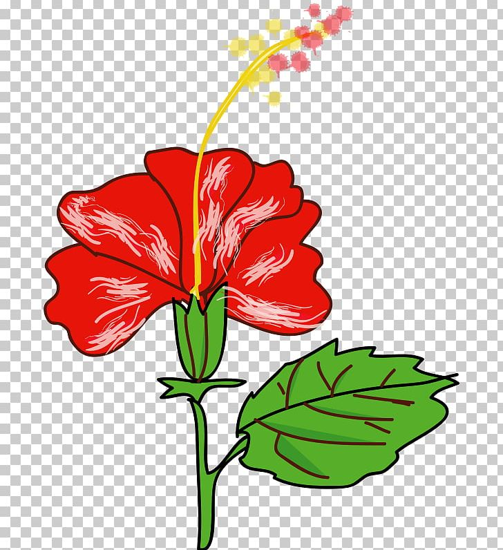 Shoeblackplant Flower Hawaiian Hibiscus Drawing PNG, Clipart, Art.