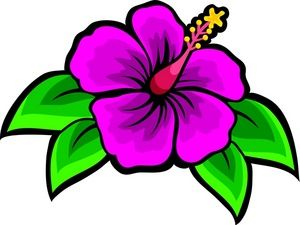drawing of beach flower.