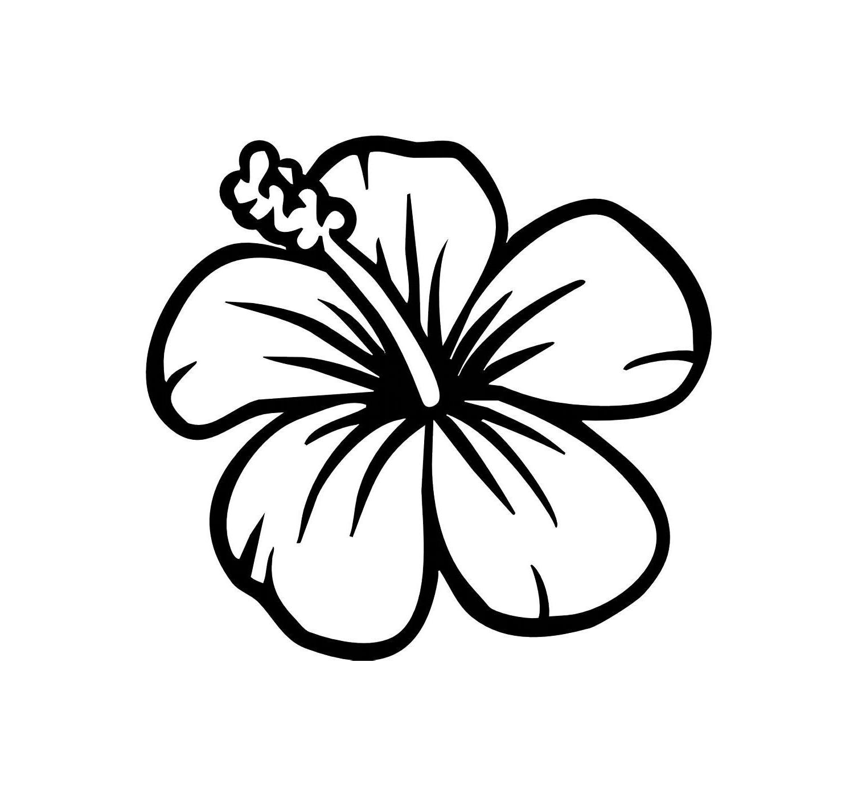 Hd hibiscus drawings clip art file free vector.
