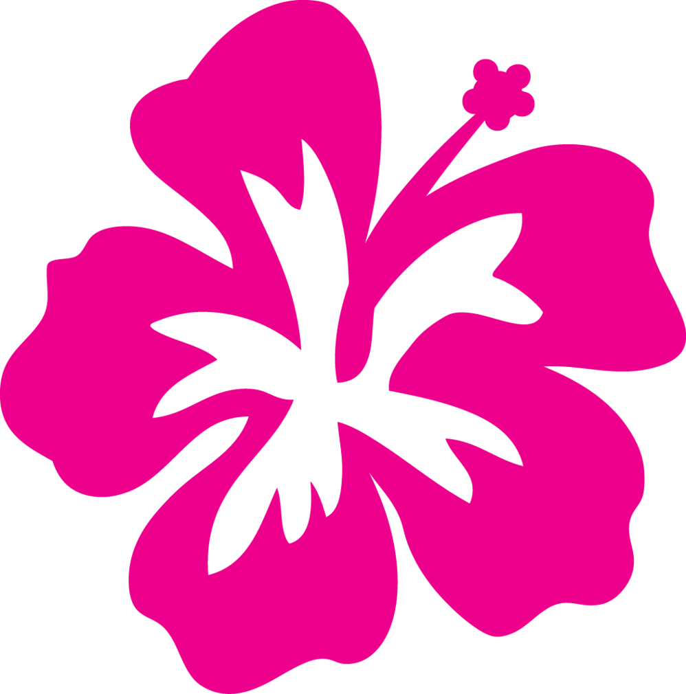 Hibiscus flower clipart outline.