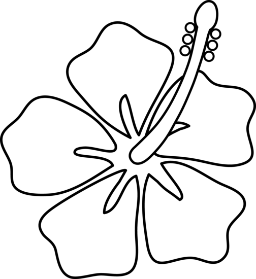 Free Hibiscus Flower Outline, Download Free Clip Art, Free.