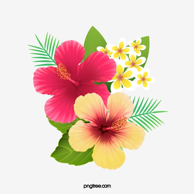 Hibiscus Png, Vector, PSD, and Clipart With Transparent Background.