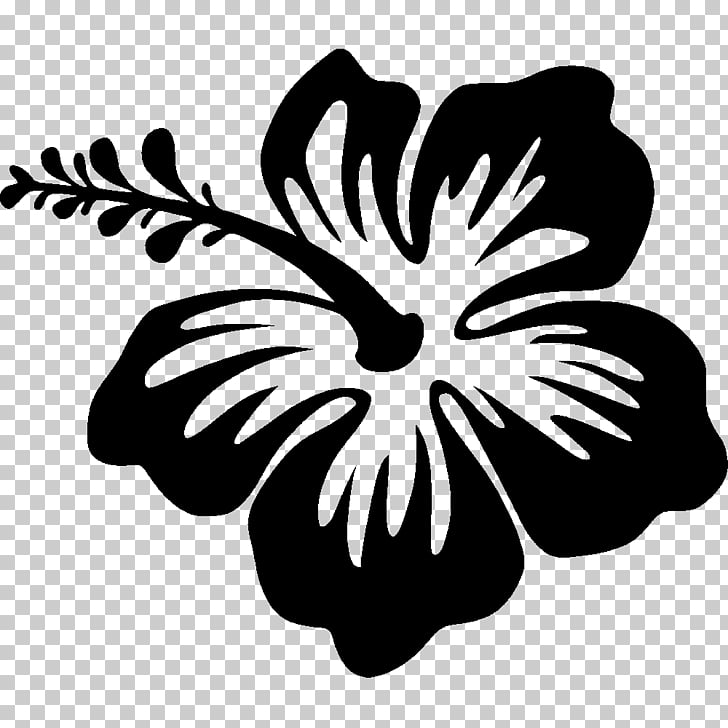 Silhouette Drawing Hibiscus, Hawaii flower, black Hibiscus.