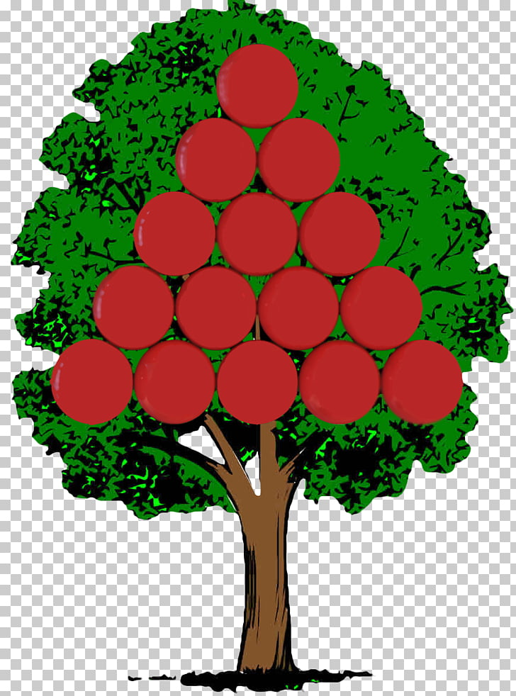 Tree Animaatio Plant Hickory, tree PNG clipart.