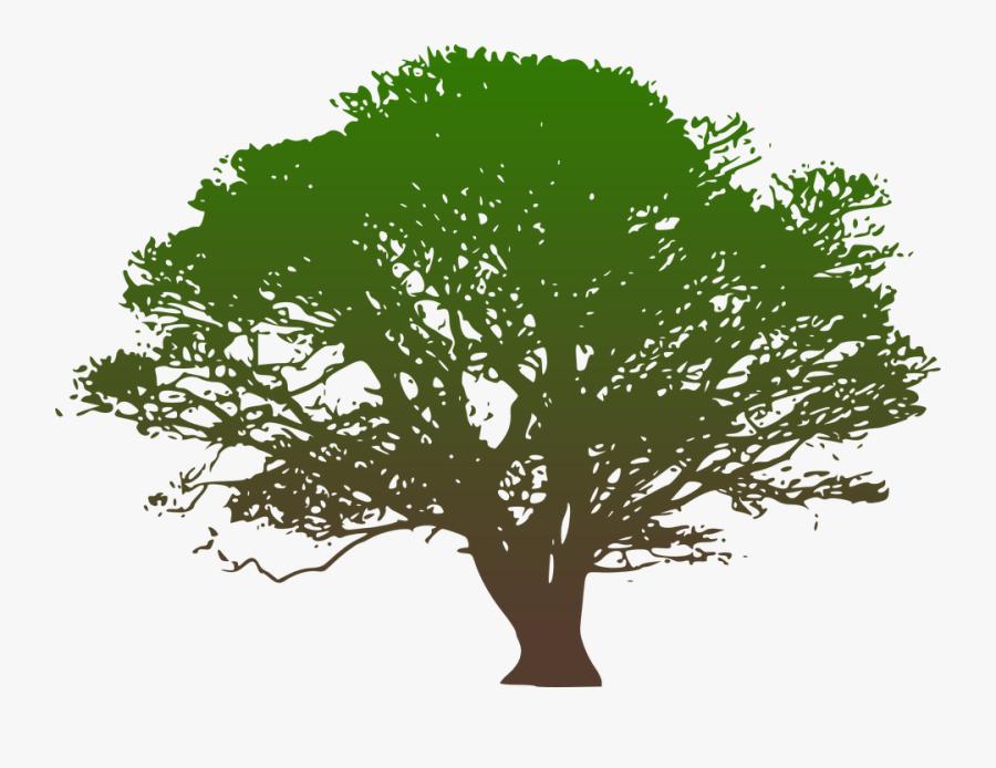 Clip Art Hickory Tree Service Westchester County Ny.