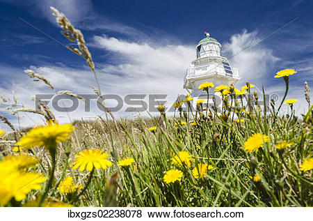 """Pictures of """"Lighthouse at Waipapa Point with clouds at back."""