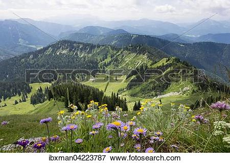 Picture of View from Hochgern mountain over Grundbach.