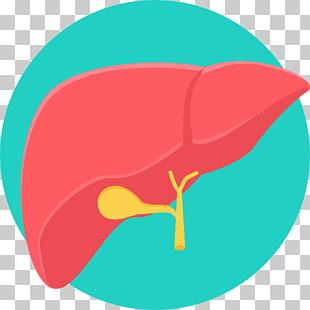 Cáncer de hígado PNG cliparts descarga gratuita.