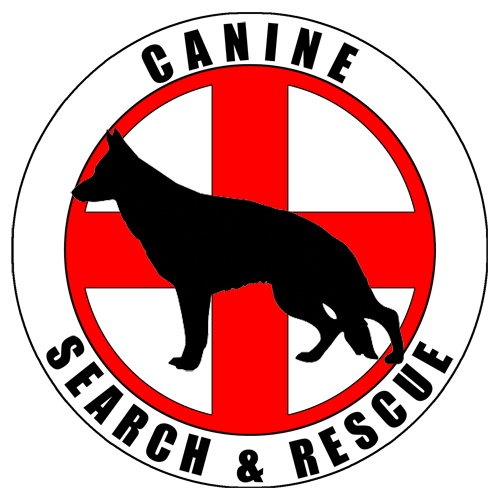 1000+ images about K9 SAR on Pinterest.