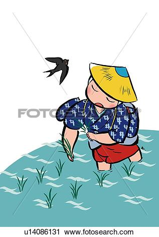 Clipart of Mid Adult Woman Planting Rice in Summer, High Angle.