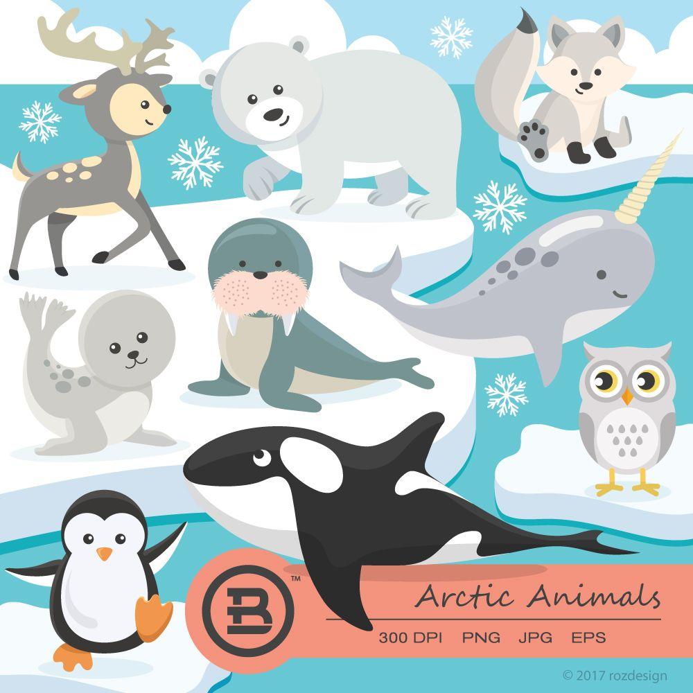 Arctic Animals clipart, polar bear vector, graphics, penguin.