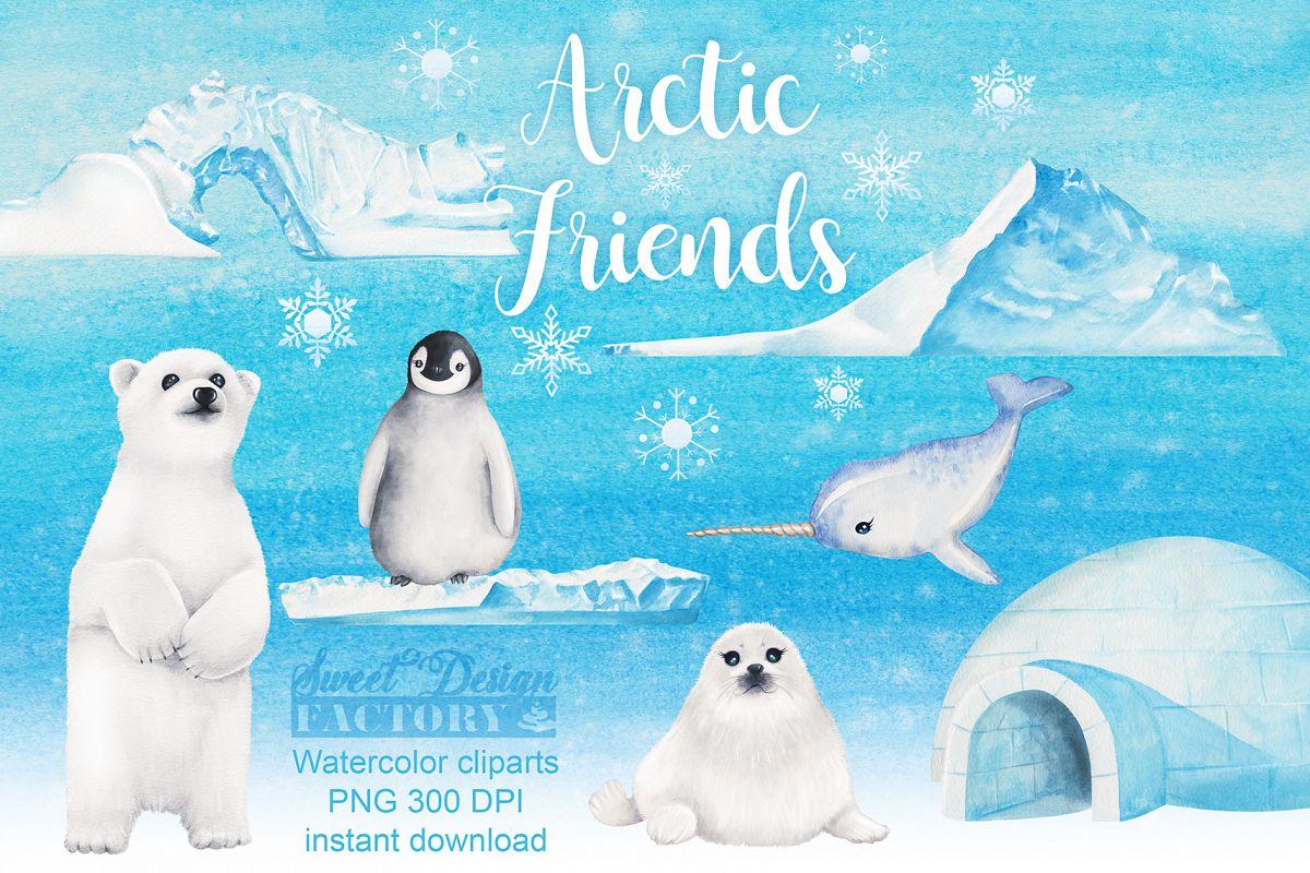 Arctic Animals watercolor Clipart.