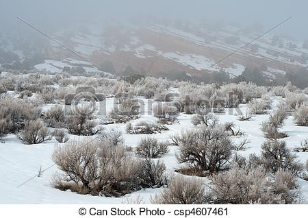 Stock Photography of Fog and Snow in the High Desert.