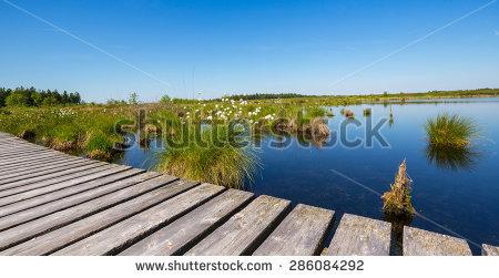 Malmedy Stockfoto's, rechtenvrije afbeeldingen en vectoren.