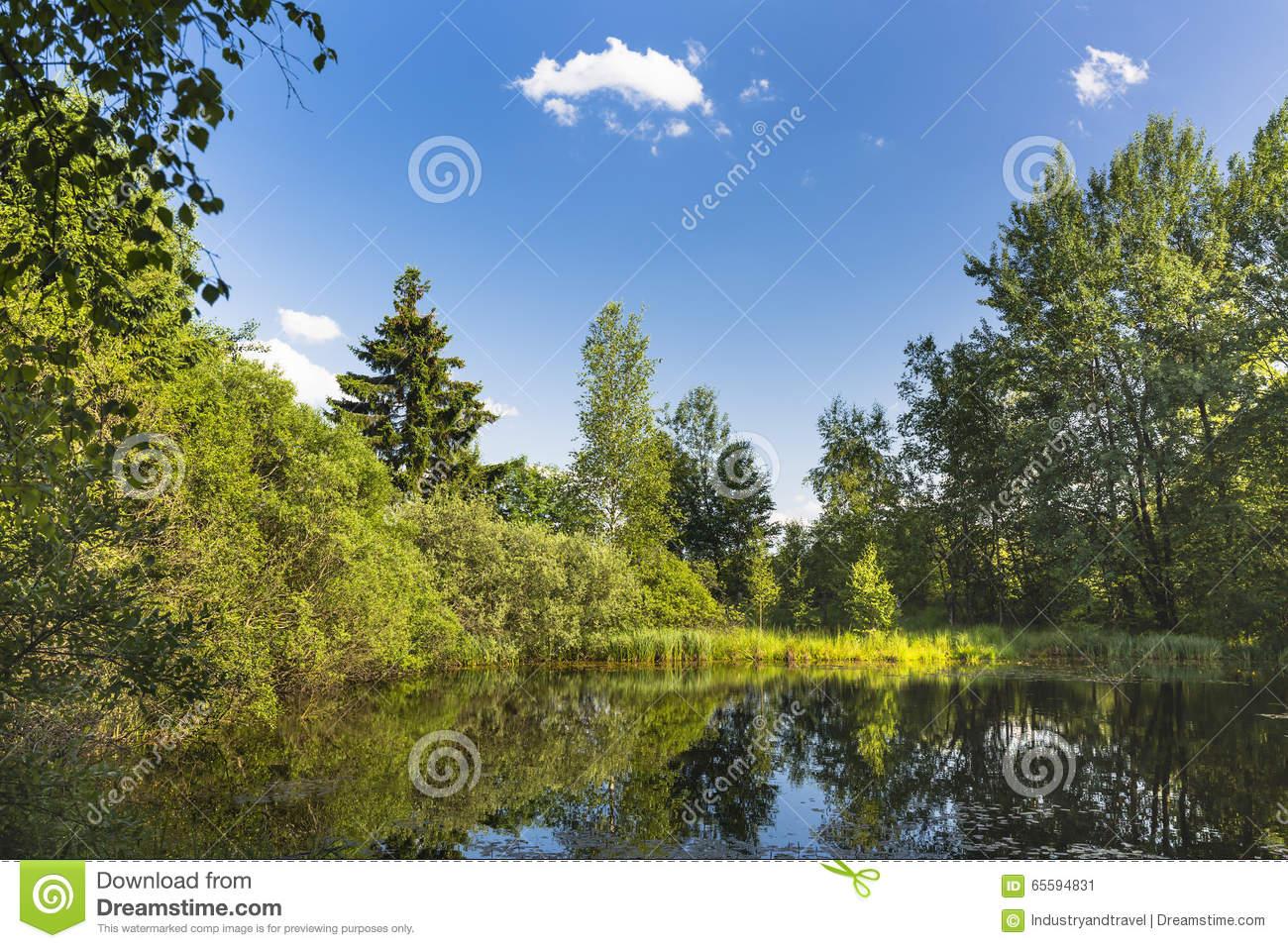 Beautiful Swamp Lake In The High Fens, Belgium Stock Photo.