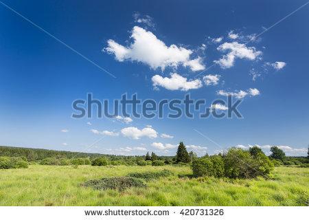 Fen Landscape Stock Photos, Royalty.