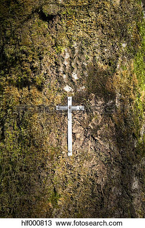 Stock Photo of Belgium, High Fens, steel sheet crucifix fixed at.