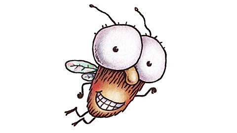Fly guy clipart.