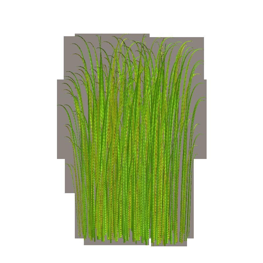 Wavy grass clipart.
