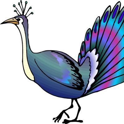 High Park Peacock (@ParkPeacock).