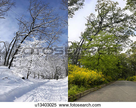 Stock Image of Two photographs of the same place in winter and.